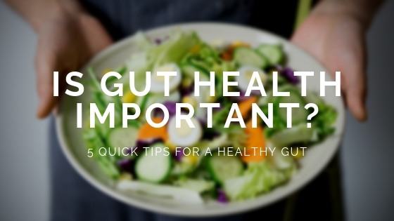 Is Gut Health Important?